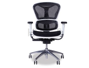 Vytas Chrome ErgoMesh Black Mesh / White Plastic  Ergonomic Office Chair image