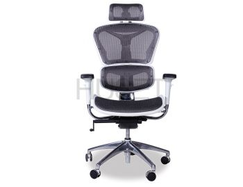 Vytas Chrome ErgoMesh Grey Mesh / White Plastic Ergonomic Office Chair with Headrest image