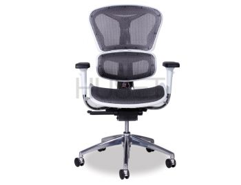 Vytas Chrome ErgoMesh Grey Mesh / White Plastic Ergonomic Office Chair image