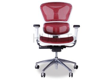 Vytas Chrome ErgoMesh Red Mesh / White Plastic Ergonomic Office Chair image