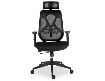 Trieste Ergonomic Office Chair with Headrest - Black Frame - Mesh - Padded Seat image